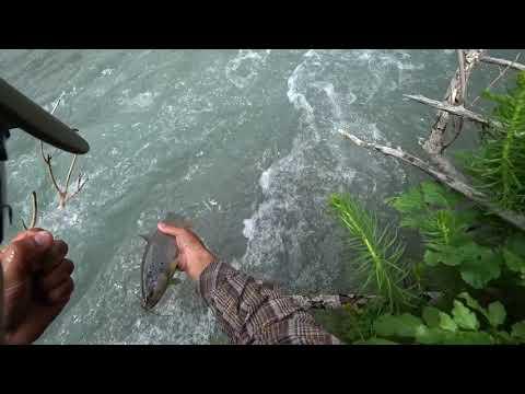Рыбалка в Чон-Алае.
