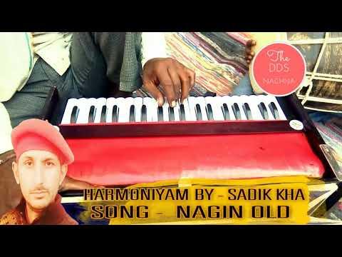 Nagin Music | Nagin Dhun Harmonium By | Sadik Kha Bikaner | Nagin Tone