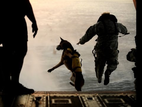 Sniffing Out Bombs: America's most elite dogs