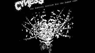 Cyness - Arbeitszwang.wmv