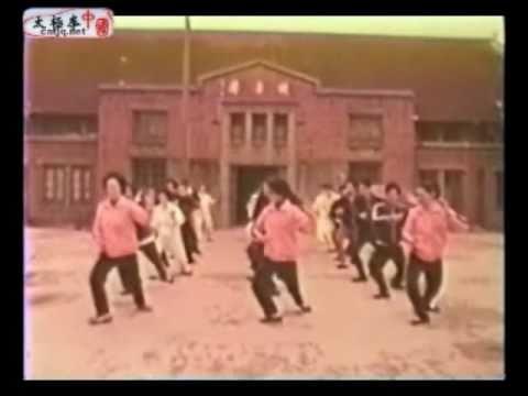 Wang ZhiHe Taijiquan - 王子和太極拳 part3/3