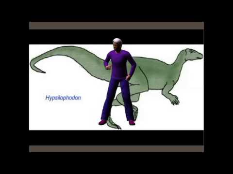 SUPERHERO EVOLUTION DEBATE: HYPOTHESES ON  ORNITHOPOD DINOSAURS