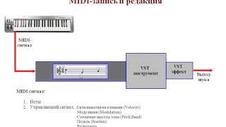 Теория / Cubase, урок 5. Как происходит миди запись и редактирование