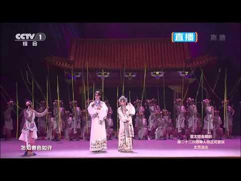 APEC Beijing Fireworks Gala 北京亚太会议烟火晚会 2014 [HD]