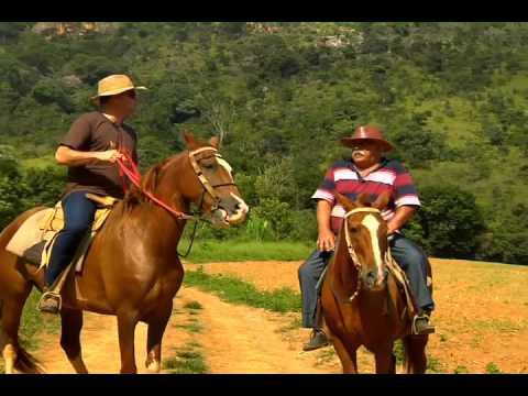 Exposição Mangalarga no Parque de Exposição da Gameleira, em BH