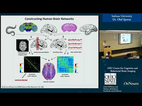 Network Neuroscience: Mapping And Modeling Complex Brain Networks (Dr. Olaf Sporns)