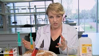 Chleb, ser, szynka - Houston, mamy problem... wszystko truje! [Co nas truje?]