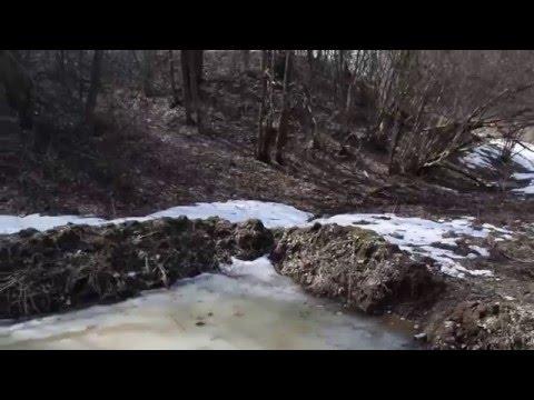 Самодельный лесной пруд после паводка