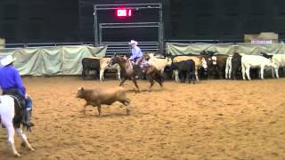 American SW Tx CHA - 8/30/15 - MONTANAS BAD CAT - rider Mike Mowery - Open Derby - score 74