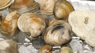 Clams 101 - Kitchen Conundrums with Thomas Joseph