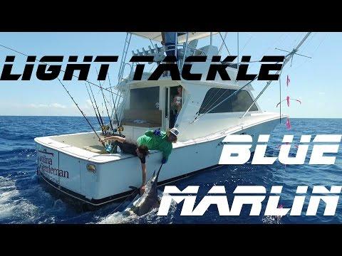 Blue Marlin Fishing In Chub Cay, Bahamas Fishing The