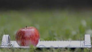 """Реклама - Фестиваль еды в ТРЦ """"Экватор"""" (г. Полтава)"""