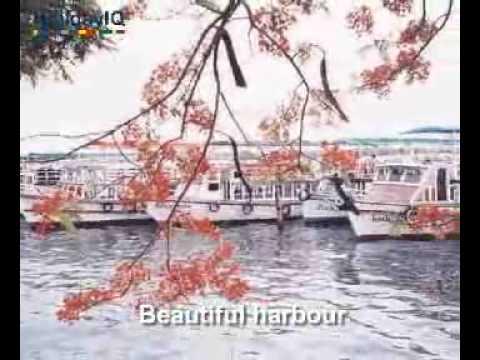 Kochi  Videos, Kerala, India