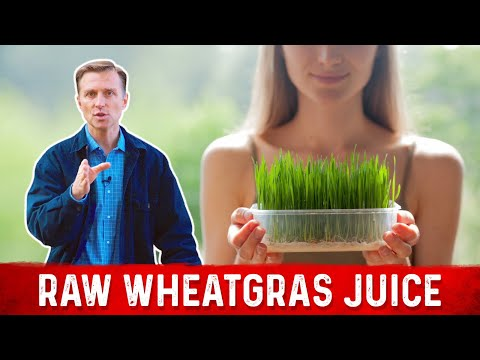 Wheatgrass Interview with Dr. Berg on the Mineral-Rich Soils & Low Heat Processing