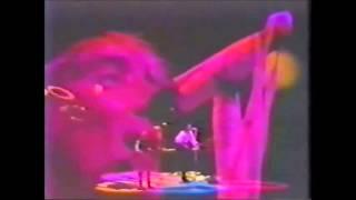 ROD STEWART mandolin wind live in 1988