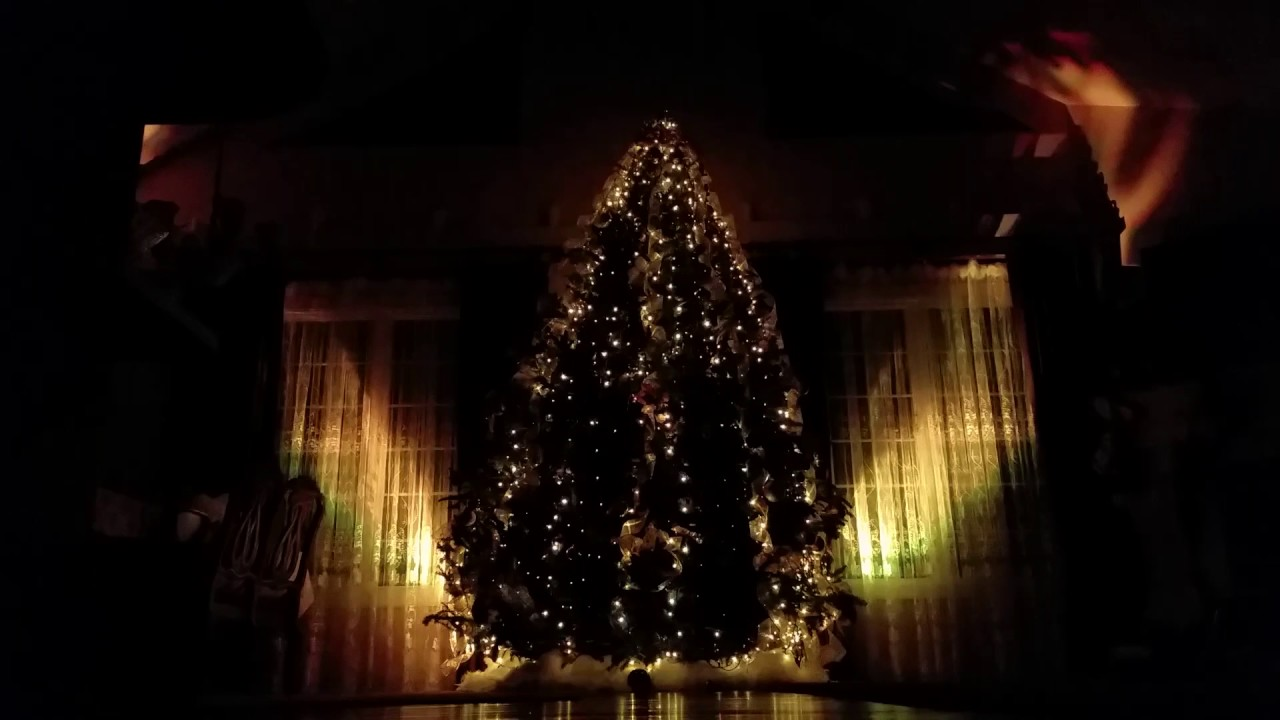 best christmas tree indoor light show 2015