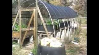 DIY Projects Quick Tour of our Cottage in the woods - Off Grid Homestead SHTF Economic Collapse