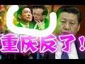 重慶市反了、至今效忠薄熙來、習大大震怒!