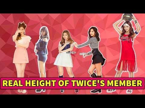 REAL HEIGHT OF TWICE'S MEMBER