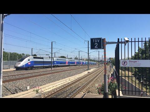 (HD) Trains at Avignon TGV, LGV Méditerranée | 22/04/2017