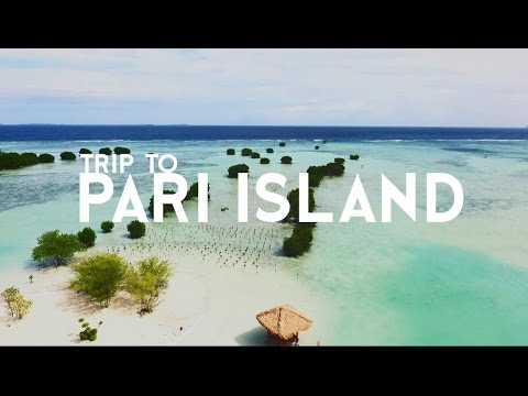 (PC ONLY) Trip to Pari Island (Thousand Islands, Indonesia)