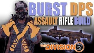"""Berserk"" Endgame PVP Assault Rifle Build Guide - The Division 2"