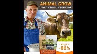 Стимулятор роста животных ANIMAL GROW, сумасшедший результат!