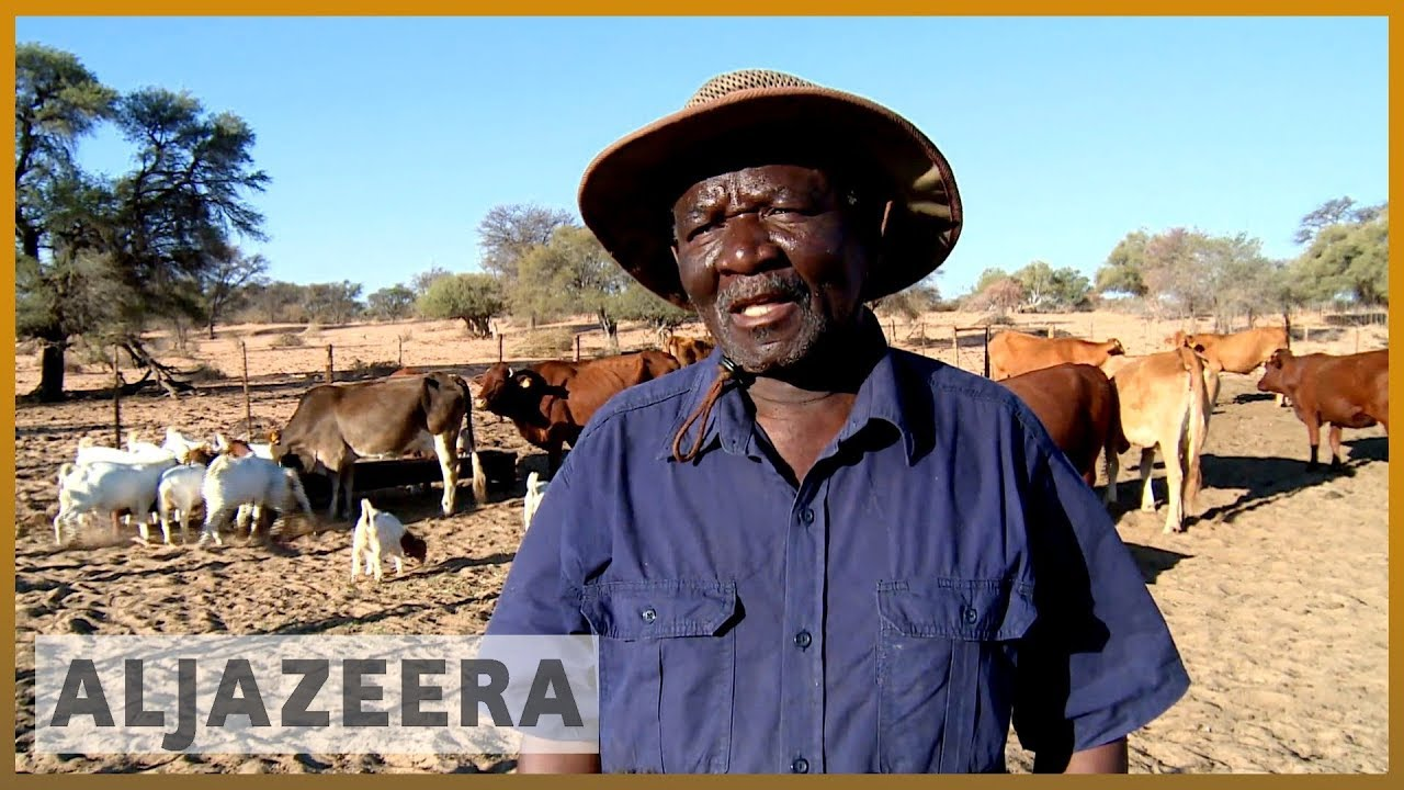 OCTOBER 2019: South Africa's worst drought in years affects farmers