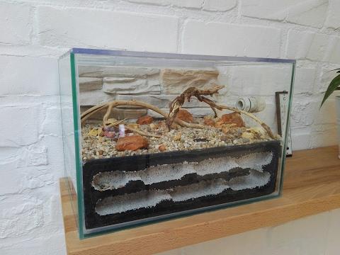 Bauanleitung: Vom Aquarium zum Formicarium