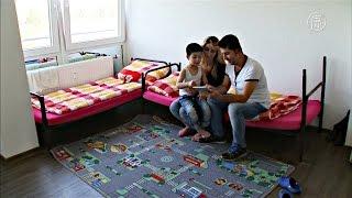 Семья сирийских беженцев воссоединилась в Германии (новости)