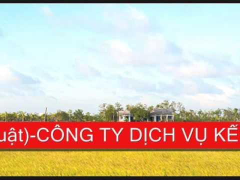 Dich vu bao cao thue tại quận 12 TP HCM
