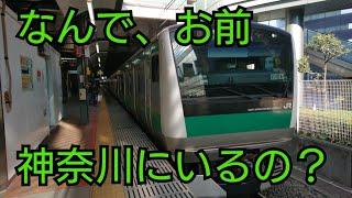 【2019,11,30】祝 相鉄JR直通線開業  埼京線に乗って神奈川へ!