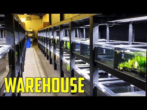 First Look At Aquarium Co-Op's New Warehouse
