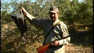 African Bird Hunting with Pedersoli