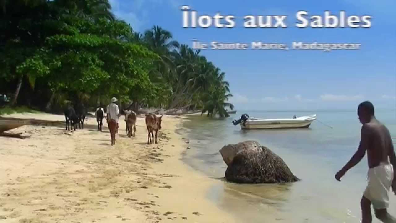sainte marie black personals North of reunion island  sainte-marie  i am interested in the bichon black male at the head february 01,  personals website by netiko contact.