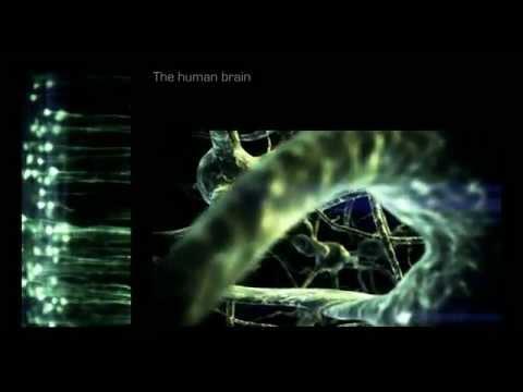 God is in the neurons - Social neuroscience