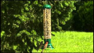 Video Perky-Pet® Squirrel Slammer Wild Bird Feeder download MP3, 3GP, MP4, WEBM, AVI, FLV Juli 2018