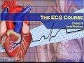 The ECG Course - Atrial Rhythms