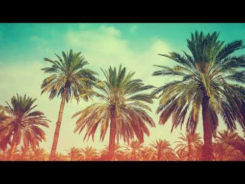 Dj M´Sound  INNA feat Erik   Ruleta  FlowStik Remix  Remix 2019