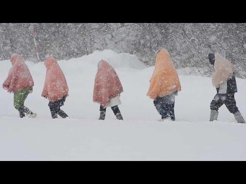 東北には冬の魅力がいっぱい !