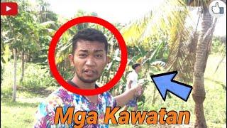 Mga Kawatan ug Butong   VLOG 3
