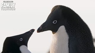 Disneynature's PENGUINS Trailer (2019) - Family Nature Movie