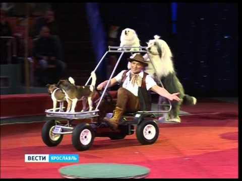 Ярославский цирк покажет новогоднюю сказку