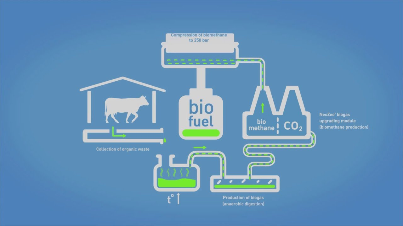 NeoZeo' biogas upgrading module for biomethane production - schematic  process