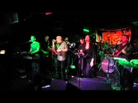"""Royal Scam Steely Dan tribute band """"FM"""""""