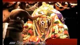 Tiruchanoor Temple - How to Darshan Padmavati Mata ?