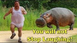 UNEXPECTED Animal ATTACKS | Wildest Animal Moments |  2020 |  funny Moments Human and Animals