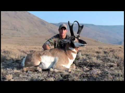 Taylor raats nevada antelope hunt 2012 part 2 youtube for Fishing license nevada