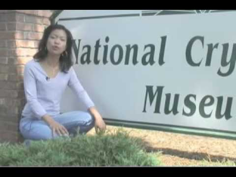 Michelle Malkin & the National Security Agency