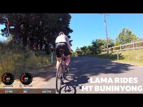 LAMA RIDES Mt